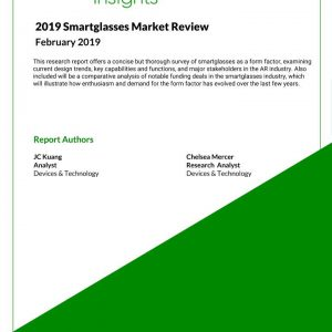 2019 Smartglasses Market Review